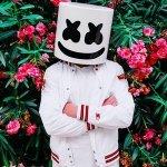 Marshmello feat. Leah Culver