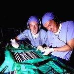 Organ Donors & Kidd Kaos