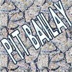 The Vibeguardz feat. Pit Bailay